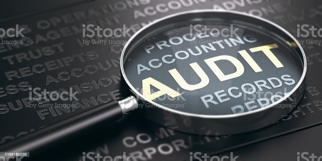 Introduction to Auditing  (D&W)